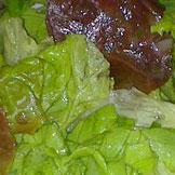 Prestige Event's - Méli mélo de salades vertes
